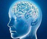 beyin - İş Yerinde Başarılı Olmak İçin Hafızanızı Geliştirin