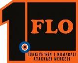 flo-eleman-alimi