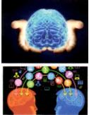 pazarlamada beyin