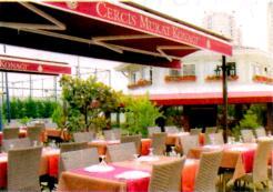 Turistik Restoran İşletmeciliği Yapan Kadın Girişimcinin Öyküsü