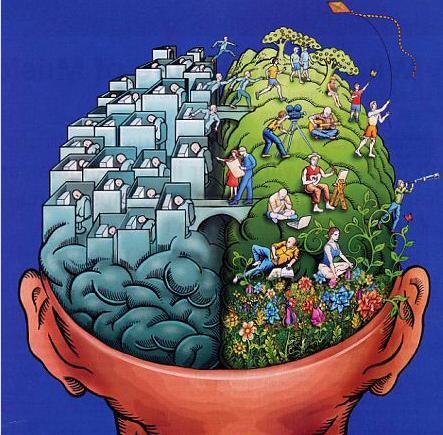 sag sol beyin kullanimi