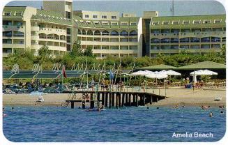 amelia beach