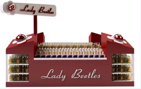 Ladybeetles1