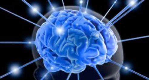 beyin kullanimi