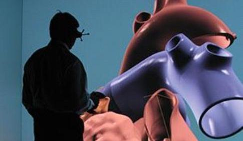 silikon kalp