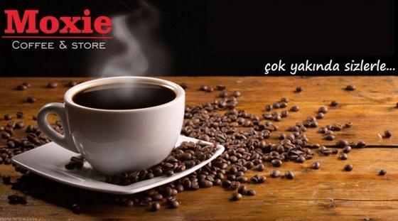 Moxie Coffee Store