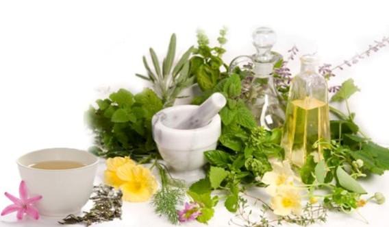 bitkisel besin desteklerine talep